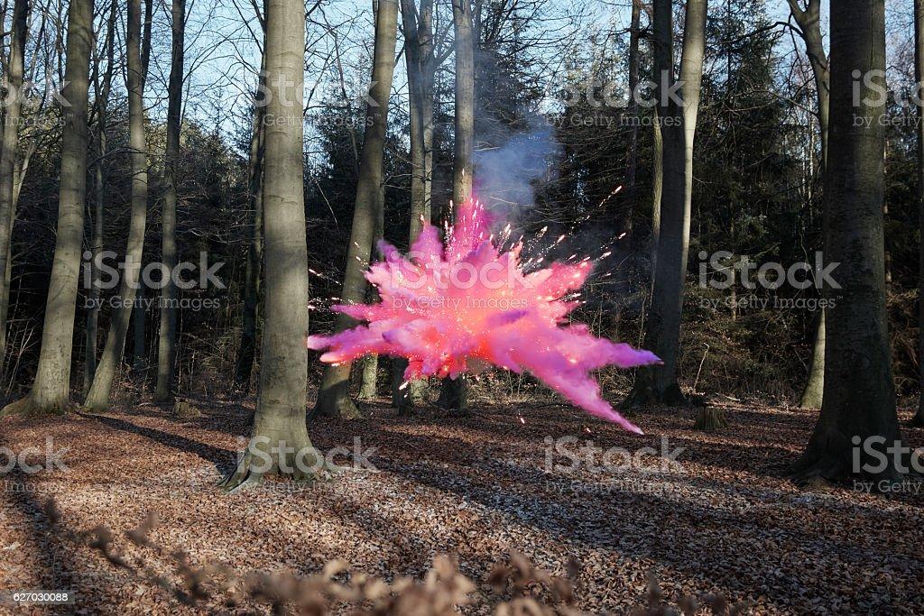 Energy burst between the trees stock photo