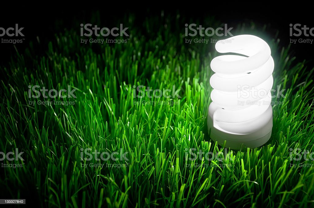 Energy saving bulb glowing in green grass royalty-free stock photo