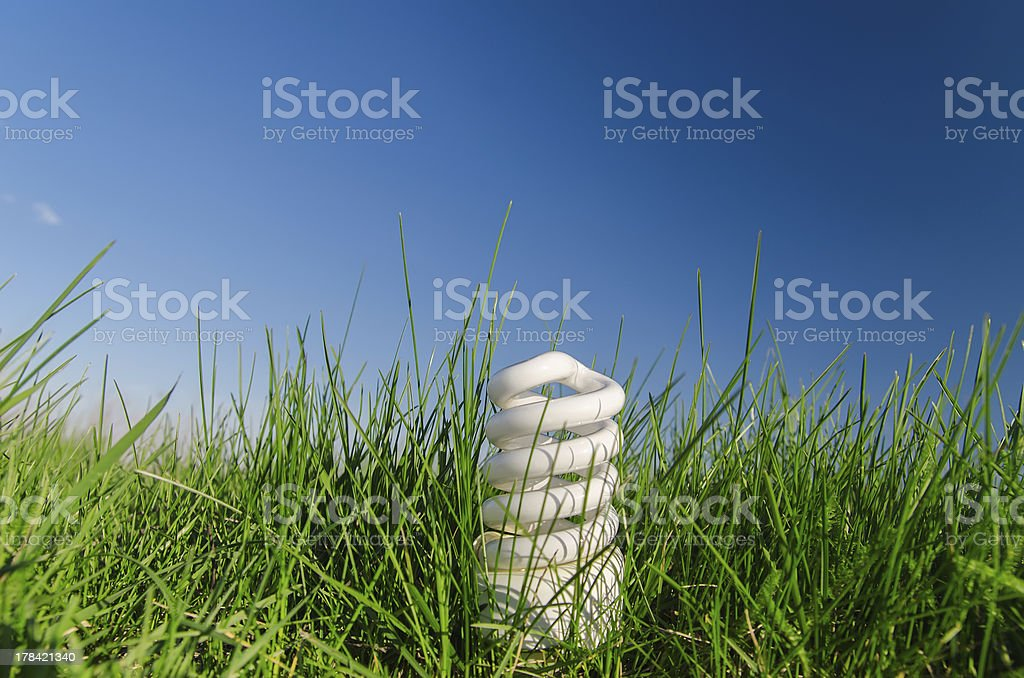 energy saving bulb in green grass royalty-free stock photo