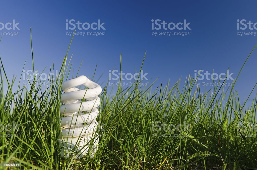 energy saving lamp in green field royalty-free stock photo