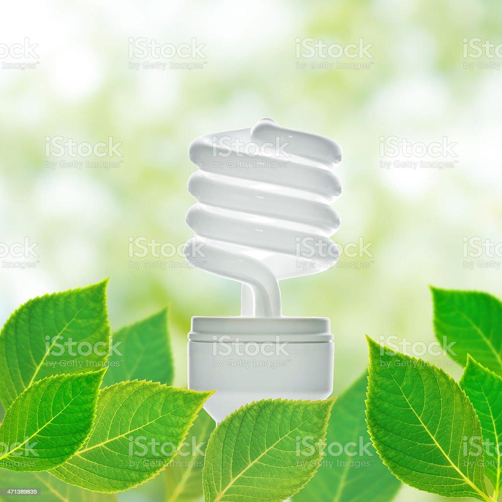 Energy saving lamp royalty-free stock photo