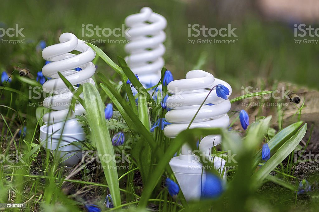 Energy-saving lamps among spring flowers royalty-free stock photo