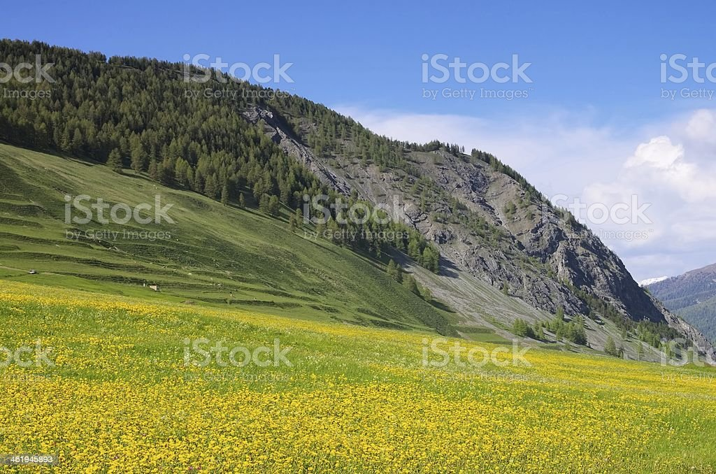 Engadin near St. Moritz royalty-free stock photo