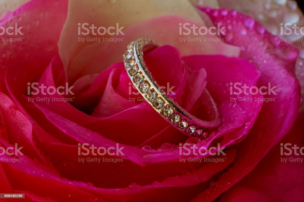 Engage Diamond Ring on a petal of roses concept of Valentines Day stock photo