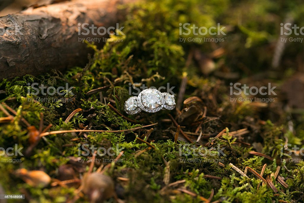 Engagement Ring in Mossy Forest Bed stock photo