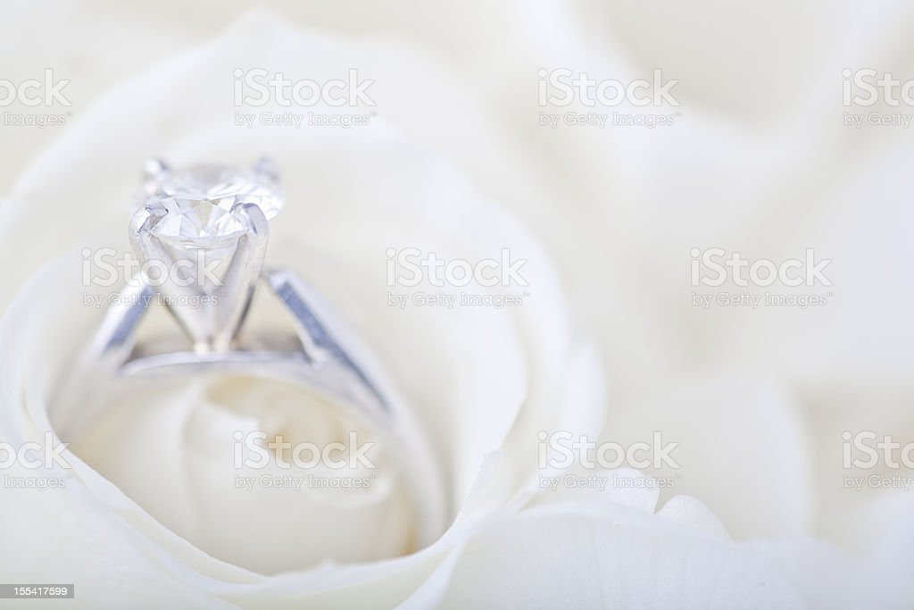 Engagement ring in white rose royalty-free stock photo