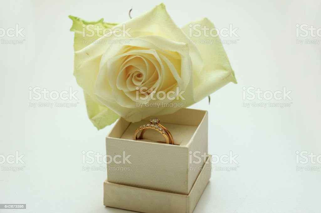 Engagement rings in box stock photo