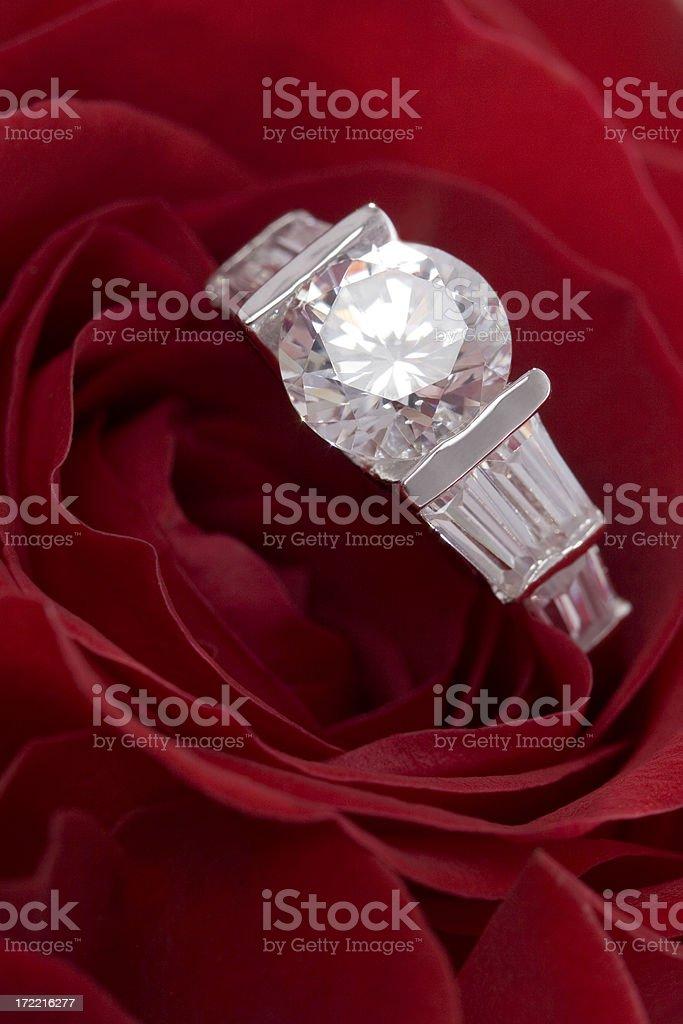 Engagement Rose 2 stock photo