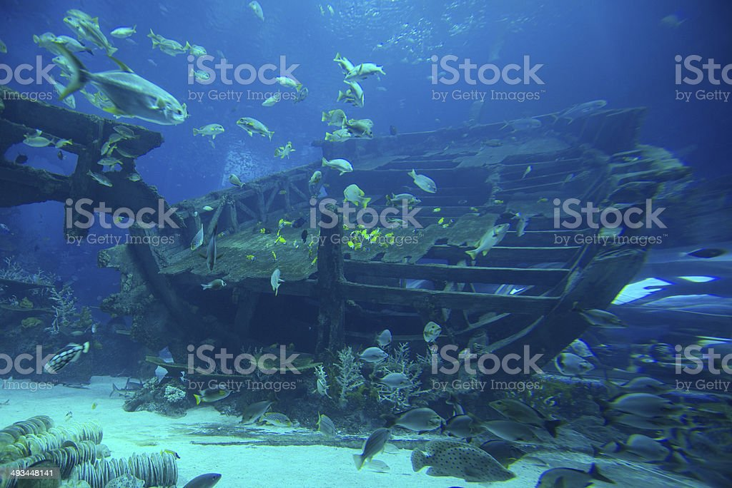 Engine room of a shipwreck stock photo