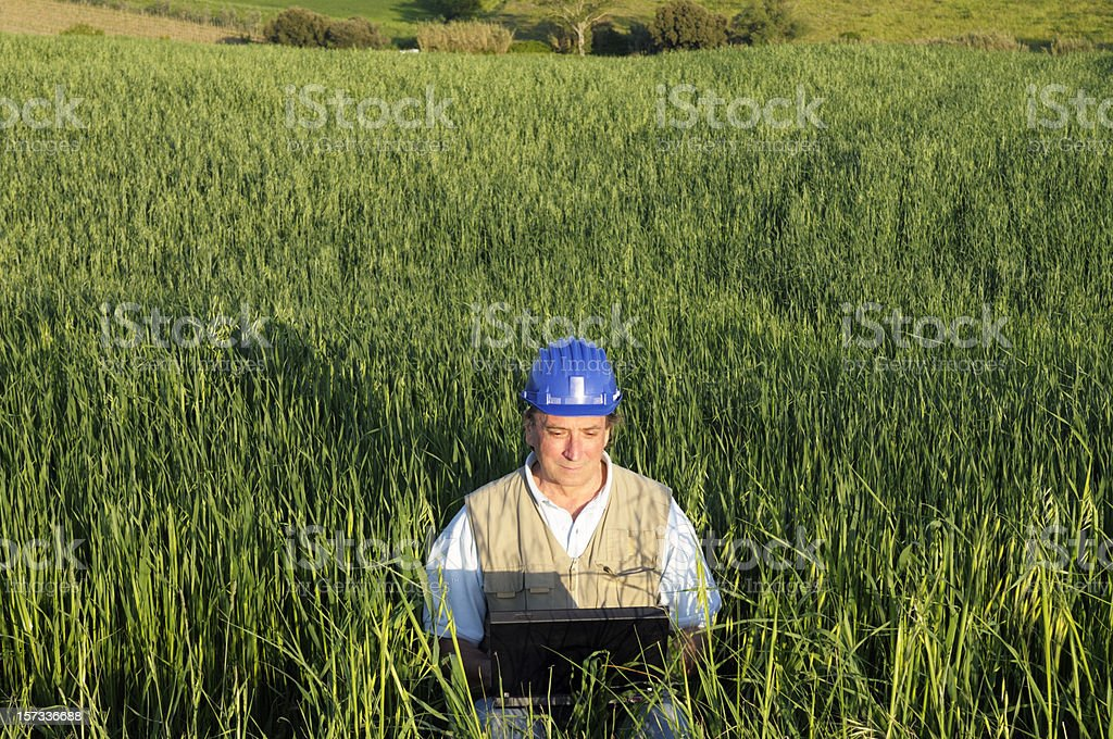 Engineeer Planning PC in a Green Field Outdoors royalty-free stock photo