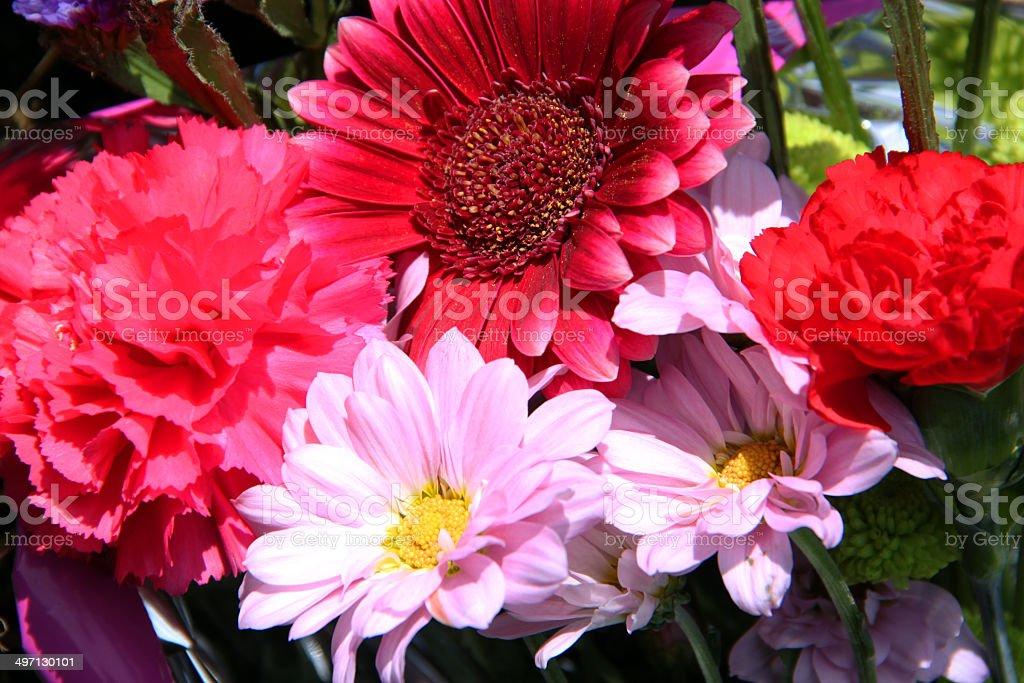 England: Flowers at Horsham St. Faith stock photo
