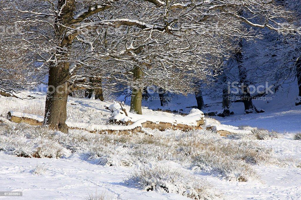 England winter scene royalty-free stock photo