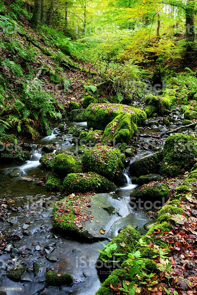 English Autumn  Brook stock photo