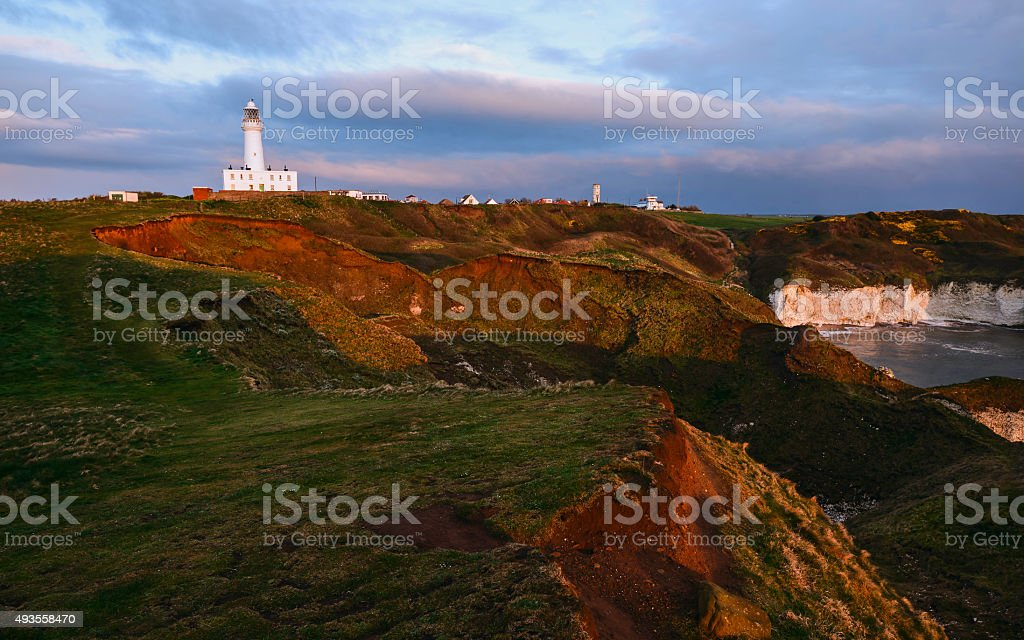 English coastline with cliffs and flora, Flamborough, UK. stock photo
