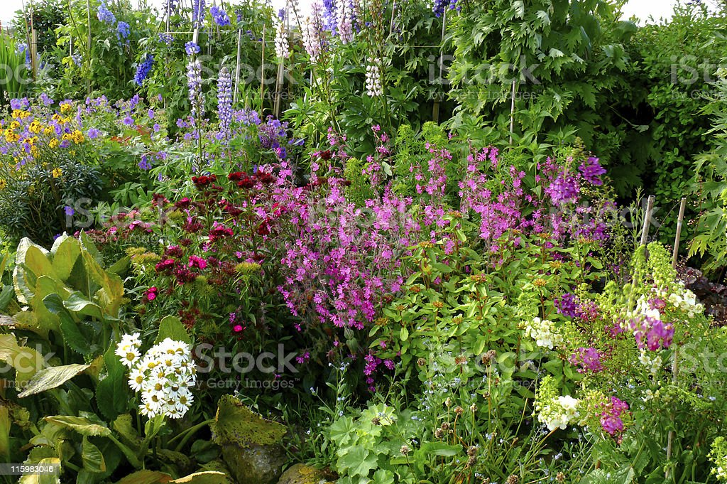 English country cottage garden stock photo