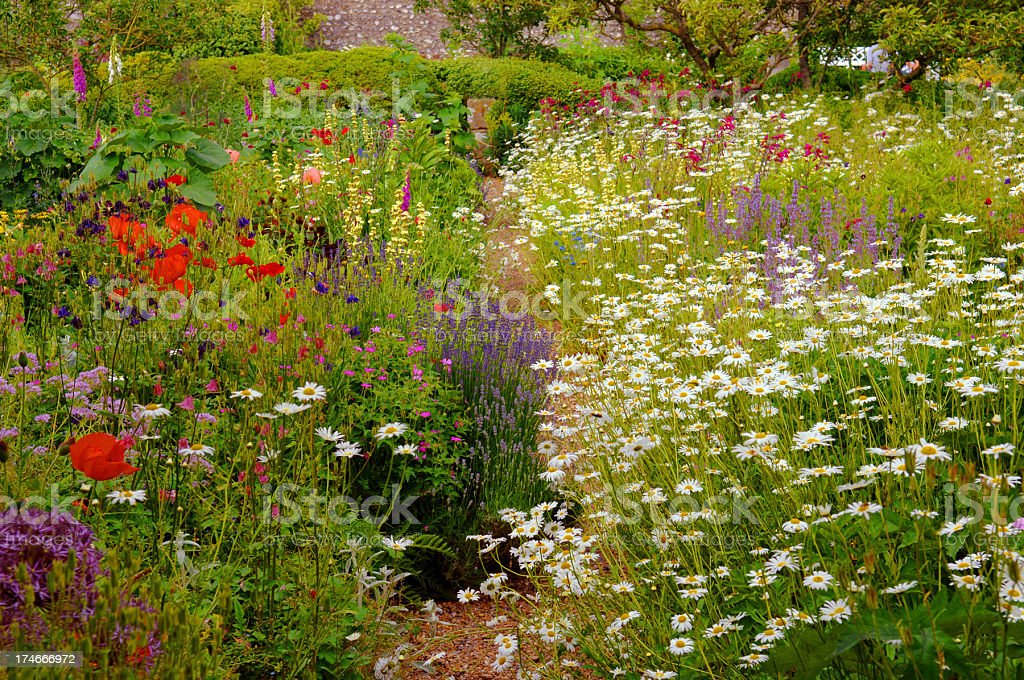 English Country Garden royalty-free stock photo