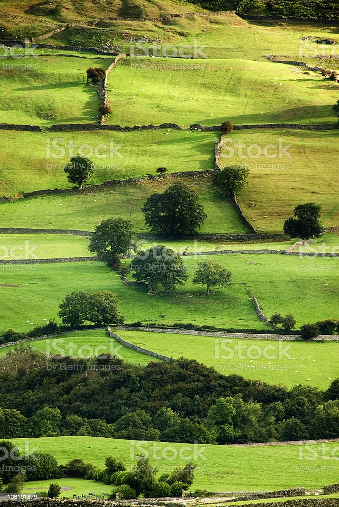 English Countryside Aerial stock photo