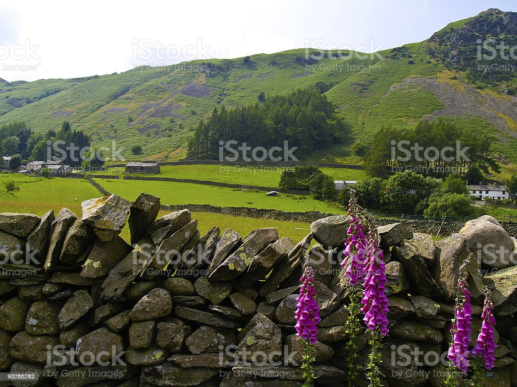English Countryside. stock photo