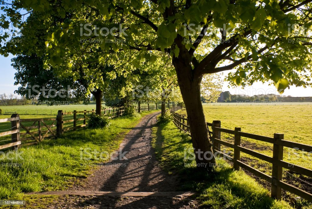 English Countryside Road in Late Afternoon Light stock photo