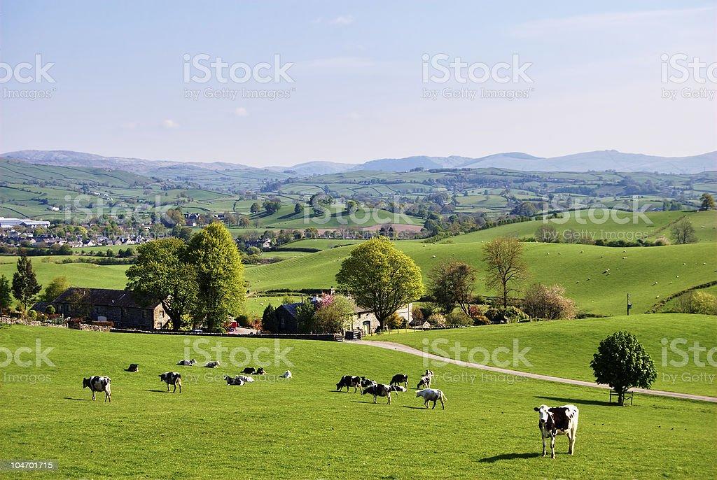 English field in Spring royalty-free stock photo
