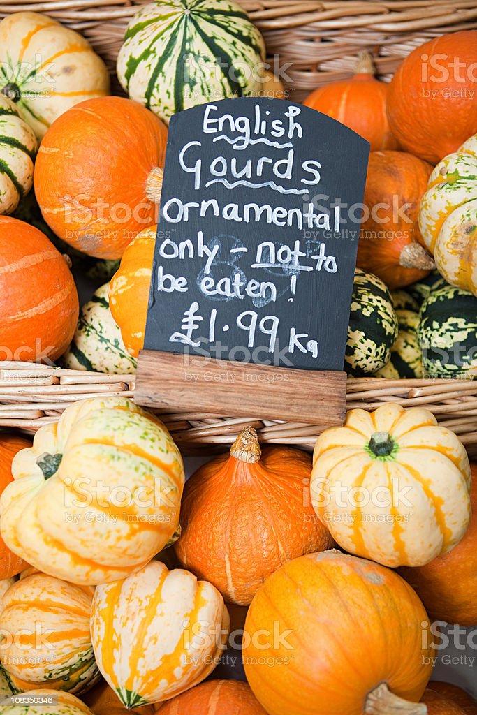 English gourds stock photo