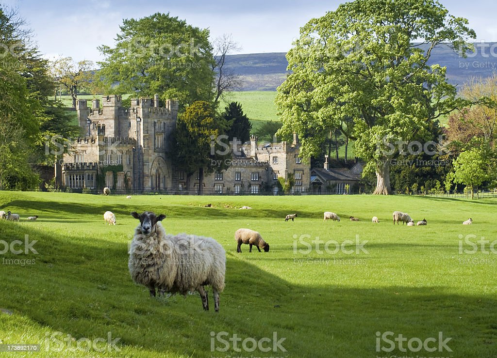 English Manor with Sheep and Yorkshire Moors royalty-free stock photo