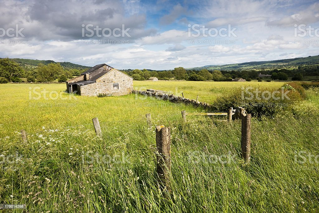 English Meadow and Barn in the Yorkshire Dales stock photo