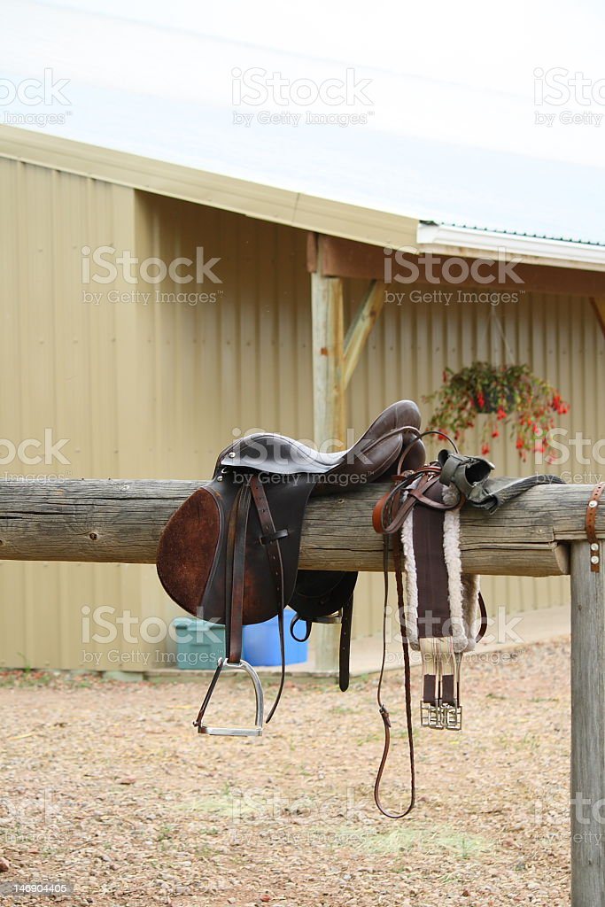 English Riding Equipment stock photo