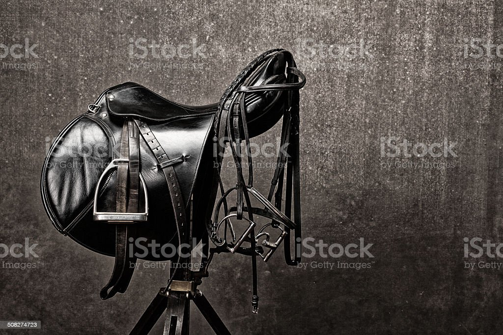 english saddle stock photo