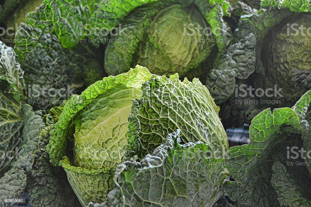 English Savoy Cabbage stock photo