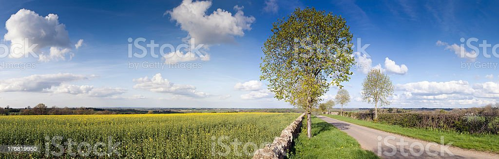 English springtime farmland and country road panoramic scenic. royalty-free stock photo
