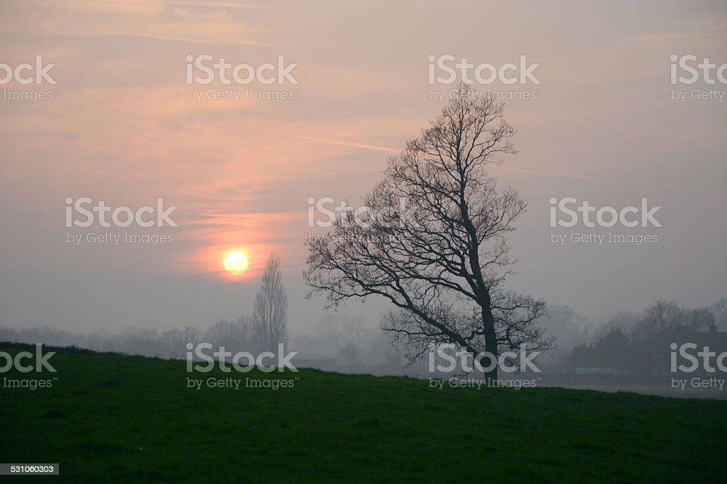 English sunset in Spring stock photo