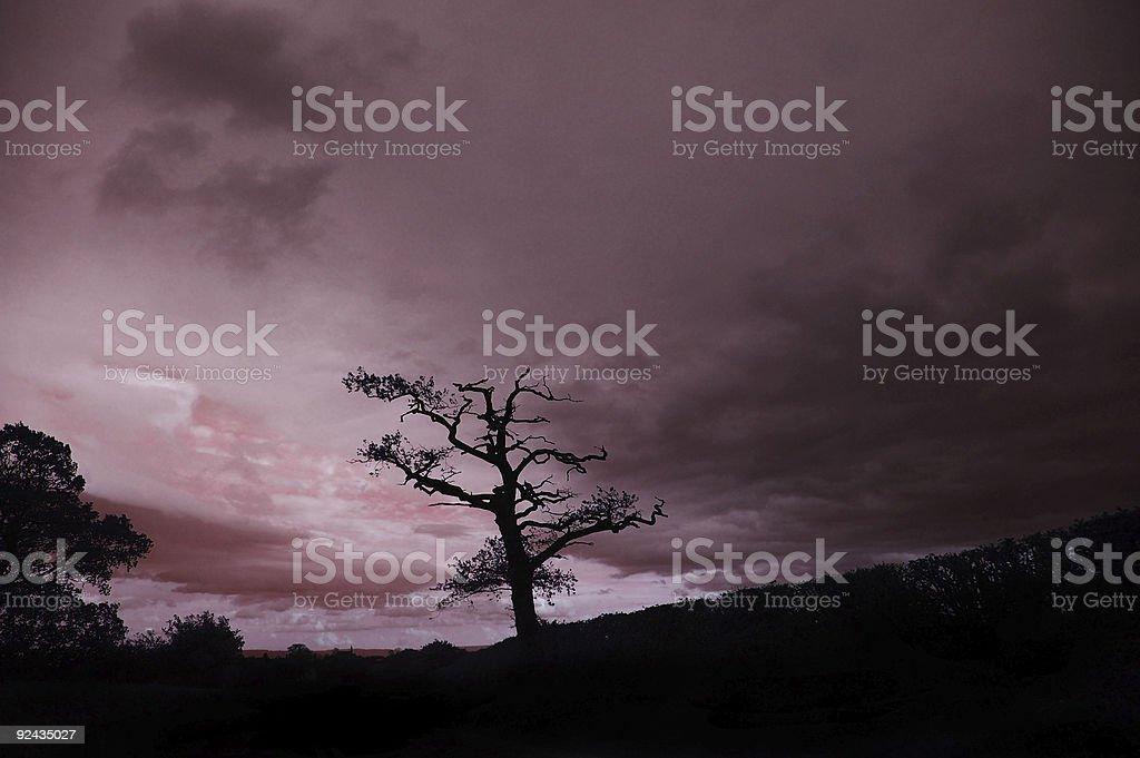 English sunset royalty-free stock photo