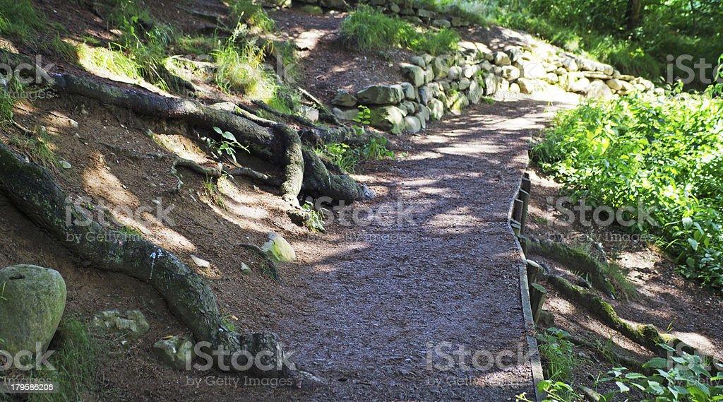 English woodland pathway royalty-free stock photo