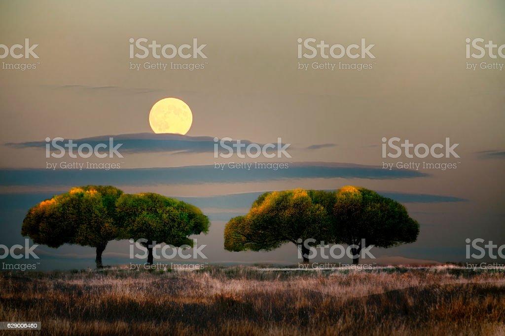 Enhanced composite of two photos stock photo