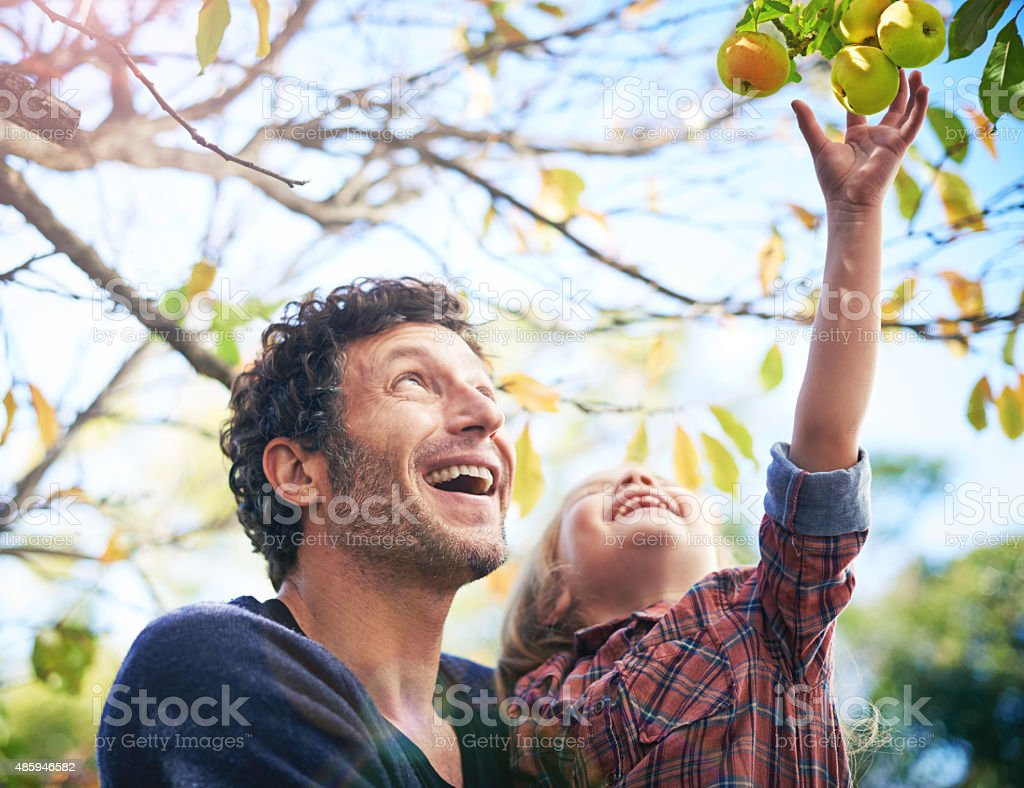 Enjoy the gifts of nature stock photo