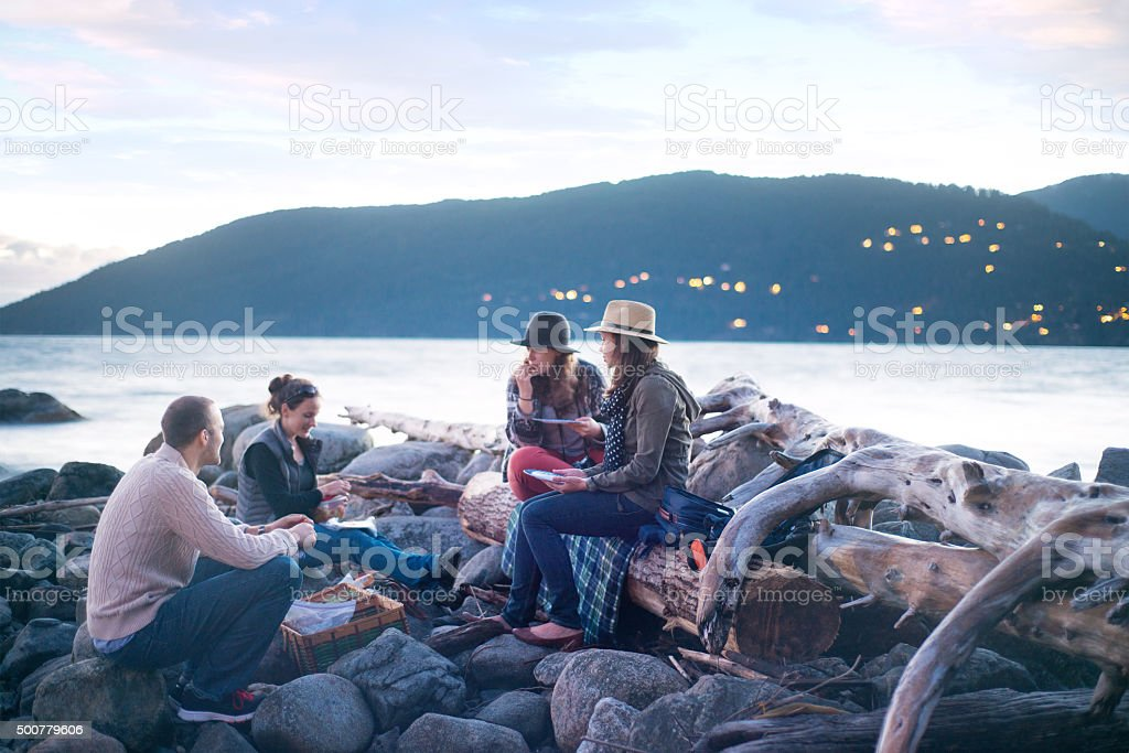 Enjoying a picnic with good friends stock photo