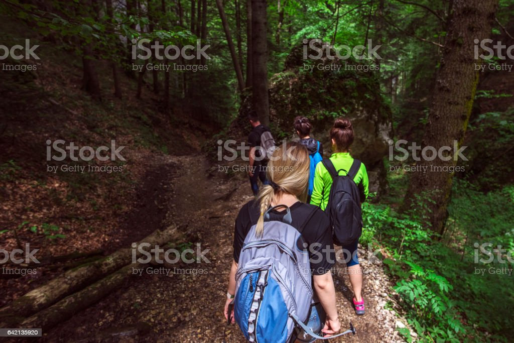 enjoying adventure in the forest stock photo