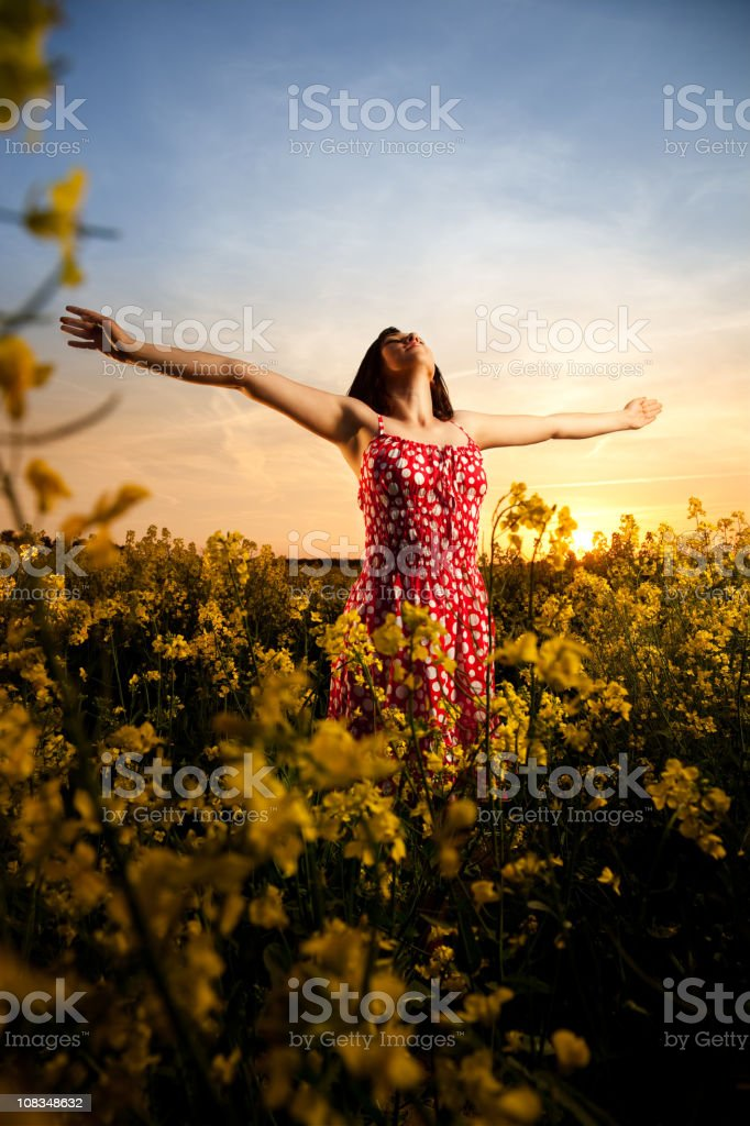 Enjoying in sunset royalty-free stock photo