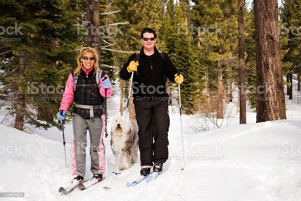 Genießen Sie Skifahren Lizenzfreies stock-foto