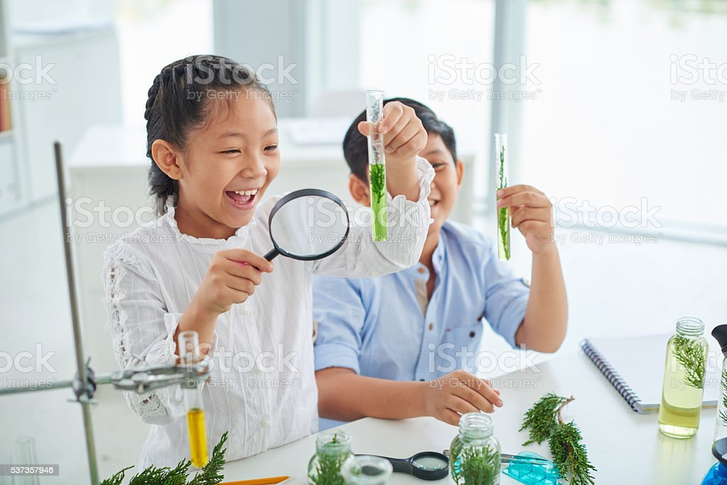 Enjoying studying stock photo