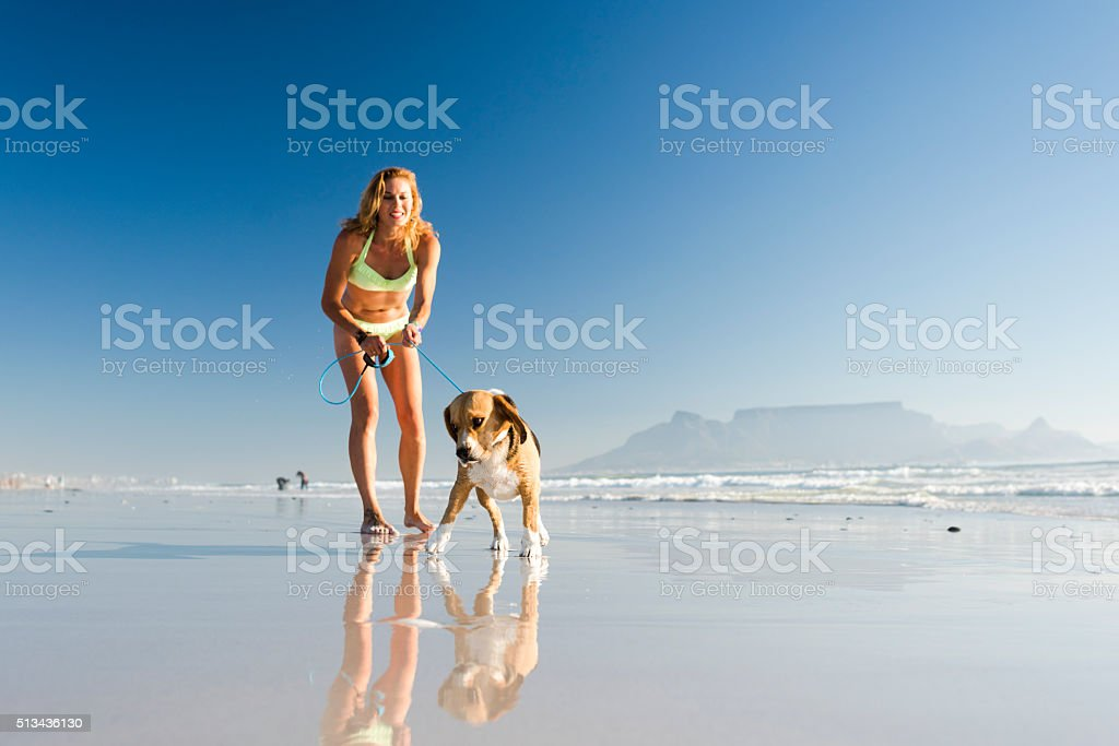 Enjoying The Day On The Beach With My Dog stock photo