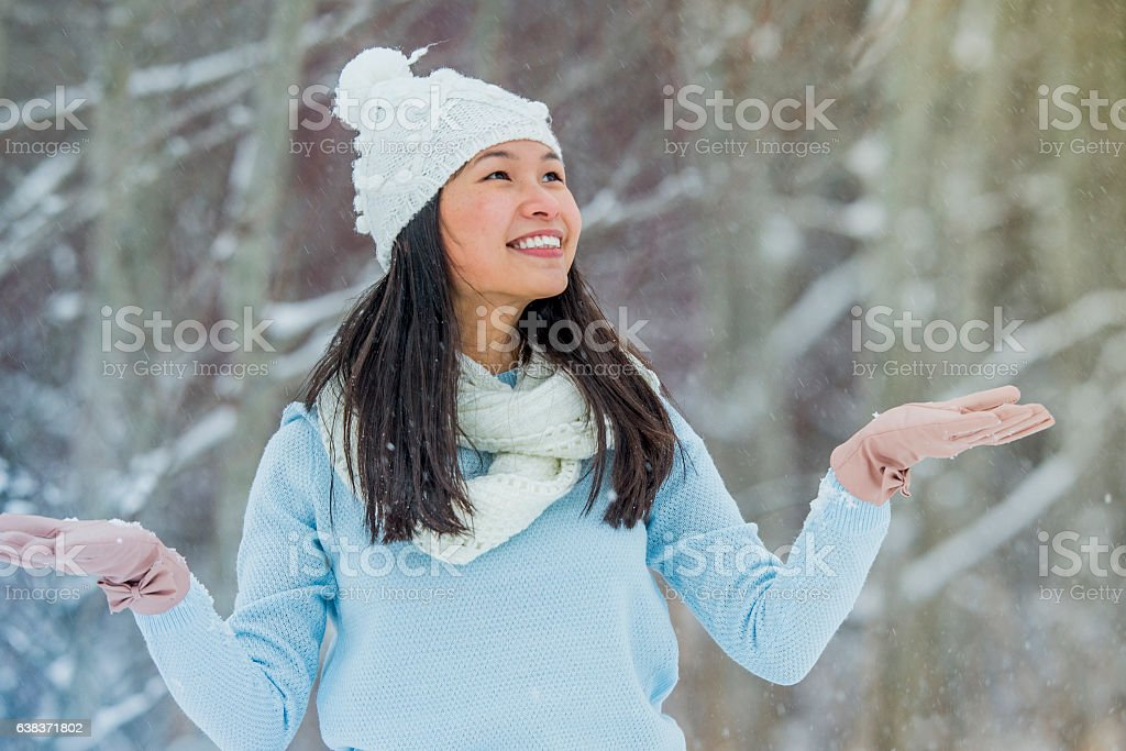 Enjoying the Snow stock photo
