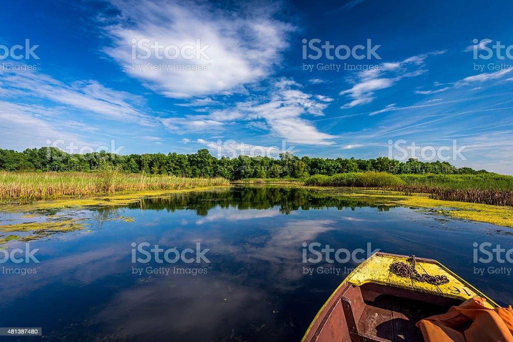 Enjoying the sunny day on a lake stock photo