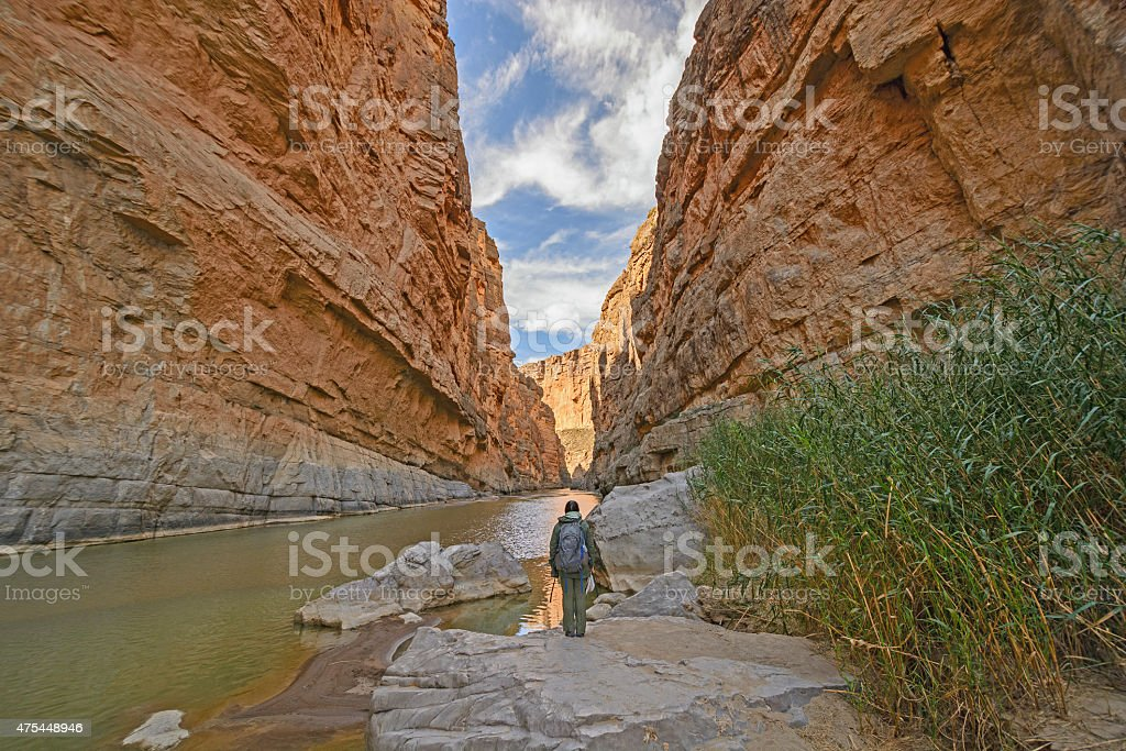 Enjoying the View of Desert Canyon stock photo