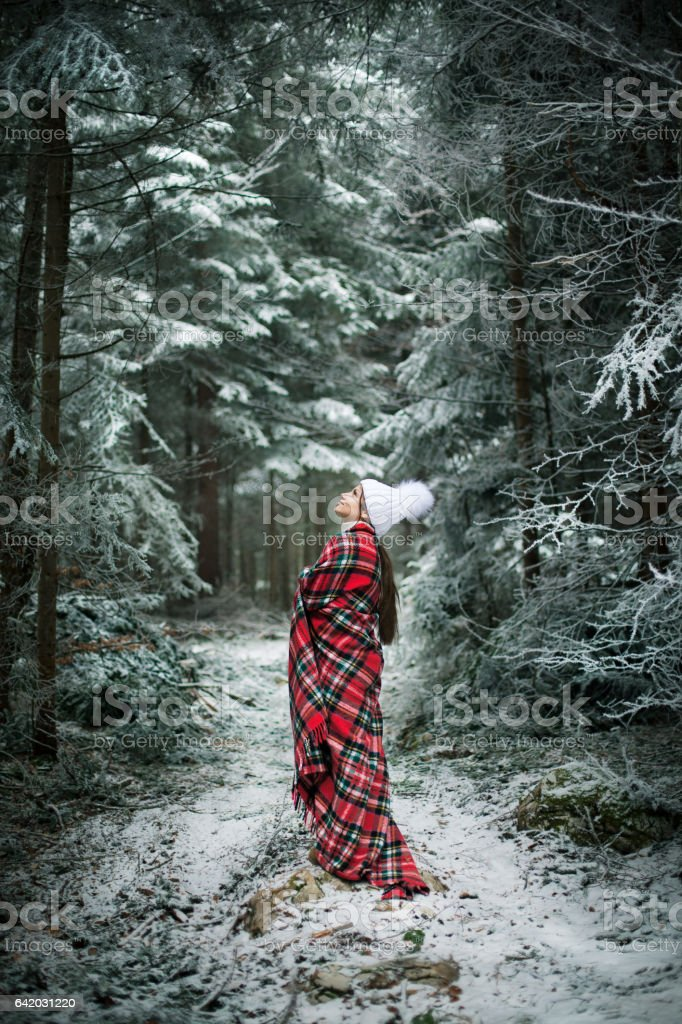 Enjoying the winter stock photo