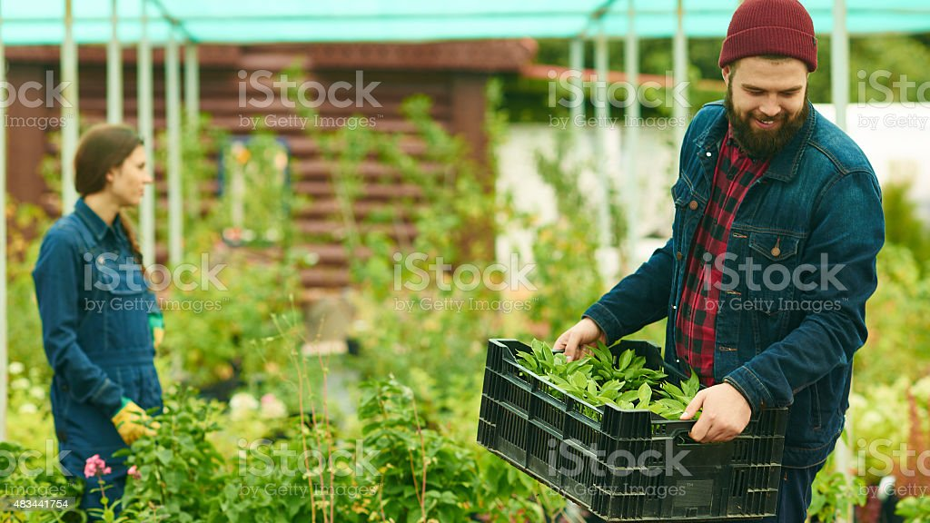 Enjoying work stock photo