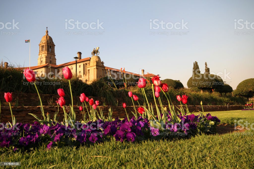 Enormous Union building secluded in field with tulips stock photo