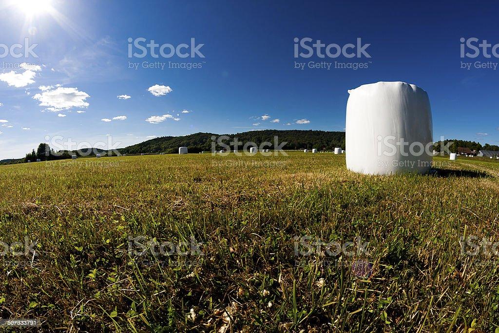 Ensilage balls against vibrant blue sky stock photo