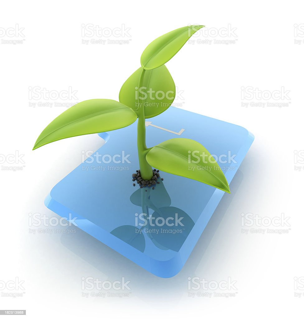 Enter key with plant royalty-free stock photo